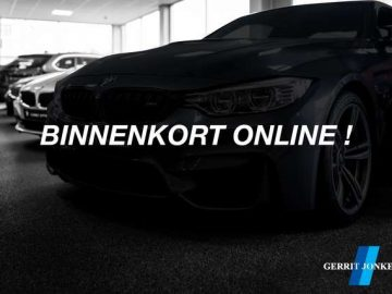 BMW 318 318i Business Line